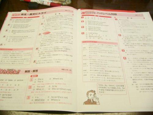 中学生ポピーの英語